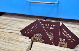гражданство после внж